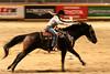 RAWF15 JSteadman 0114 (RoyalPhotographyTeam) Tags: sun royal rodeo 2015 rawf nov08