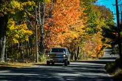 samsebeskazal.livejournal.com-8675.jpg (samsebeskazal) Tags: autumn upstate newyorkstate catskill catskillmountains