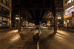 Explore your city  #Chicago #Portrait #Night #NightShot #NightPhotography #StreetPhotography #Streets #City #TheL #Urban #UrbanExplorer #Urbex #Symmetry #ChicagoIllinois #Illinois (kallyone) Tags: city nightphotography portrait urban chicago streets night illinois nightshot streetphotography symmetry thel chicagoillinois urbex urbanexplorer
