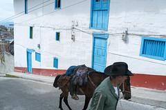 Colombian Vertigo 2015- www.wmaisy.com -26 aout 2015 -247.jpg (Wilfried Maisy Photojournaliste) Tags: photography photojournalism co antioquia colombie photojournalisme salamina photographiehumaniste photographiedocumentaire