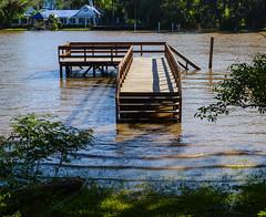 Rio crecido (Alex Ferrero) Tags: costa brown rio river muelle buenos aires paseo deck verano tigre veraneo