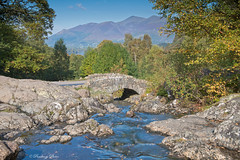 Ashness Bridge in autumn  looking across Derwent Water and  Derwent Fells, The Lake District National Park, Cumbria, England, Uk, Gb (PANDOOZY PHOTOS) Tags: uk greatbritain travel bridge autumn trees england outcrop mountains english tourism nature water rock stone rural woodland landscape outdoors countryside nationalpark woods october rocks stream view natural beck unitedkingdom britain outdoor postcard derwent lakes lakedistrict relaxing scenic picture bridges rocky peak nobody tourist resort hills boulders valley cumbria fells trust gb summit vista british derwentwater relaxation northern picturesque ashnessbridge tranquil attraction rambling suprise skiddaw unspoiled aonb crag borrowdale packhorse cumbrian bassenthwaite unspoilt stonebuilt ny270196