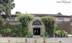 Taxila Museum (Samrah Shahid) Tags: travel pakistan heritage museum culture taxila
