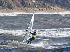 PC310585-Edit (Brian Wadie Photographer) Tags: gulls oystercatcher windsurfing kiting em1 goodlight 14xtc avonbeach canon70300lis hemgistburyhead
