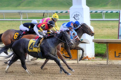 "2015-12-13 (29) r2 thegroup for 2nd or 'Place' (JLeeFleenor) Tags: photos photography md marylandracing marylandhorseracing laurelpark jockey جُوكِي ""赛马骑师"" jinete ""競馬騎手"" dżokej jocheu คนขี่ม้าแข่ง jóquei žokej kilparatsastaja rennreiter fantino ""경마 기수"" жокей jokey người horses thoroughbreds equine equestrian cheval cavalo cavallo cavall caballo pferd paard perd hevonen hest hestur cal kon konj beygir capall ceffyl cuddy yarraman faras alogo soos kuda uma pfeerd koin حصان кон 马 häst άλογο סוס घोड़ा 馬 koń лошадь maryland"