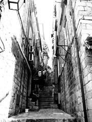IMG_5449 (maru.hvozdecka) Tags: guca trumpet festival balkan music serbia montenegro krka dubrovnik kotor oldtown unesco gipsy tara bridge fortress church summer waterfalls