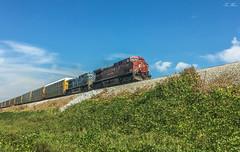 CSX Q211-01 at Emerson (travisnewman100) Tags: csx train freight railroad q211 autorack automobile unit wa subdivision owa atlanta division cp canadian pacific ac44cw leaser cefx bluebird