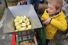 Scratting Apples with a scratter 2 (Local Food Initiative) Tags: permaculture apple day apples press pressing cider group sustainable orchard scrat scratting crusher scratted pulper