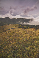 Bromo, Indonesia (pas le matin) Tags: outdoor field bromo landscape travel voyage indonesia grass plant sky clouds asia southeastasia world paysage canon 7d canon7d canoneos7d