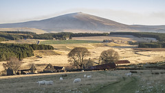 Winter is coming (judmac1) Tags: cabrach moor abandoned croft farm ruin buckofthecabrach snow frost winter scotland highlands