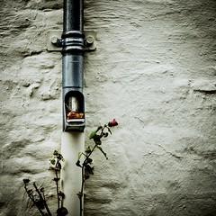 (Nico_1962) Tags: leica m240 summicron 50mm wall muur rangefinder manualfocus primelens leicam nederland thenetherlands vierkant square