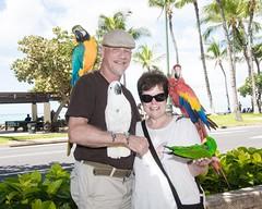 Waikiki Bird People (Oliver Leveritt) Tags: nikond7100 afsdxvrnikkor18200mmf3556gifed oliverleverittphotography hawaii oahu waikiki waikikibeach bird birds parrot conure honolulu man woman couple highkey