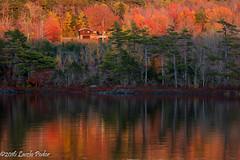 Sunset Colours (laszlofromhalifax) Tags: lauriepark lakeshore shoreline lake water fall autumn halifax novascotia canada