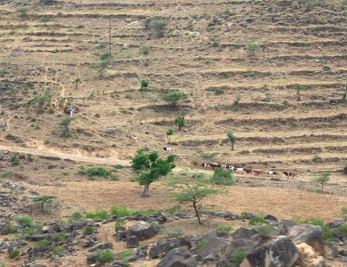 On the main road from Asmara to Massawa