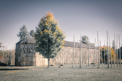 Longhousea at Iroquoian Village, Crawford Lake Conservation Area, Ontario (teachandlearn) Tags: architecture longhouse road canada iroquois village ontario wood
