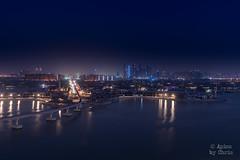 Dubai Palm (apics_chris) Tags: dubai marina palm jumeirah atlantis skyline water uae vae abu dhabi