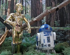 C-3PO & R2-D2 on Endor (Worfles) Tags: starwars returnofthejedi endor c3po r2d2 bandai bandaistarwars actionfigures actionfigurephotography starwarsactionfigures