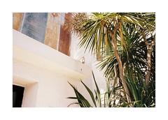 Somewhere In Normandy (Punkroyaltiger) Tags: film analog contax contaxg2 kodak portra portra400 normandy