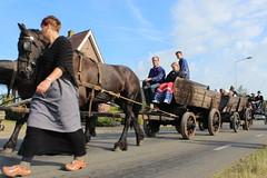 The Flaeijel festival parade (Davydutchy) Tags: flaeijelfeest flaeijel festival feest dorpsfeest nijhoarne nieuwehorne âldhoarne oudehorne fryslân friesland frisia frise nederland netherlands niederlande paysbas holland country life platteland boer farmer bauer fermier paysan agricultural community hynder horse paard pferd konj hest ĉevalo കുതിര caballo лошадь kůň horsedrawn paardenwagen bespannen wagen wagon cart kar fries friesian frisian woman apron clogs klompen