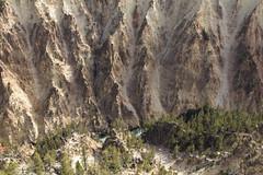 untitled-3 (eenerf) Tags: wyoming yellowstonecanyon yellowstonepark naturalbeauty nature