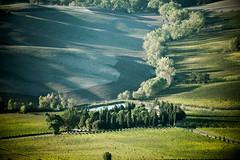TuscanyUmbria-1059