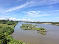 Nature at it's best (Ebindev) Tags: green water iphonephotography backwaters river landscape