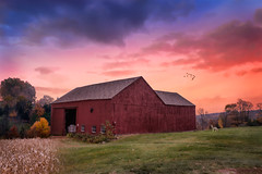 Middlefield Farm at Sunset (Trotter Jay) Tags: middlefieldct middlefield redbarn barn oldbarn cornfield sunset redsunset coyote scenicct scenicnewengland ruralct countryside landscapephotography nikond7100 nikon1855mm