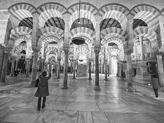 Mezquita, Córdoba, Andalucía, Spain (Angel Talansky) Tags: cordoba andalucia spain turismo ciudad monumento mezquita catedral columnas arquitectura arcos mosque moschee mosquée mesquita cathedral arch arches zuiko olympus 7mm em1 catedraldecordoba catedralcordoba mezquitadecordoba arcada interior 1000 greatmosqueofcórdoba