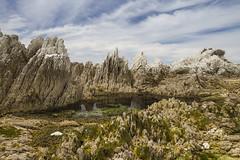 Limestone shoreline and rockpools - Kaikoura New Zealand (Kathy Reid. NZ) Tags: kaikoura newzealand nz linestoneshoreline rockpools clouds landscape