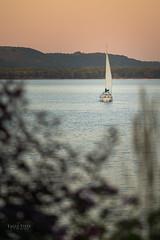 Sailboat at Dusk (eagle-vista-studio) Tags: sailboat lakepepin