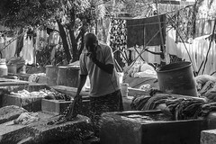 Dhobi Ghat (Naveen Gowtham) Tags: life light portrait people blackandwhite bw india man love home nature monochrome work canon t photography 50mm mono blackwhite open y o outdoor expression g air ngc streetphotography streetlife monotone clothes h wash national laundry r p ng laundromat blacknwhite chennai washers washing geographic tamilnadu nationalgeographic ghat dhobi naveen naveens gowtham chetpet outdoorlaundry canon600d gnaveen openairlaundromat naveensphotography naveengowtham naveeng dhobikana naveengowthamphotography