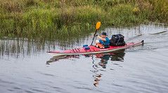 Paddling with a Puppy (Jay:Dee) Tags: park dog ontario reflection water kayak wake ripple paddle killarney paddling provincial