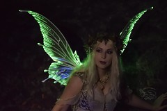 Xtra Large Light Up Green Flora Wings (Fancy Fairy) Tags: wings fairy greenfairy fairywings