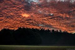 Glowing Eye (ralf.kerkhoff) Tags: deutschland natur himmel wolken nrw landschaft sonne deu sonnenstrahlen naturpark hohemark reken