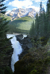 Sunwapta Falls, Jasper National Park, Alberta - ps6656-61 (photos by Bob V) Tags: panorama mountains rockies waterfall jasper rockymountains jaspernationalpark canadianrockies sunwaptafalls sunwapta jasperpark mountainwaterfall mountainpanorama