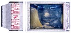 Aaron (Michael Bartosek) Tags: camera portrait 3 film glass lens polaroid fuji scan automatic land instant epson fujifilm 100 element landcamera f88 instantfilm 114mm fp100c v850 3elementglasslens