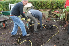 Nov_allotment (22)