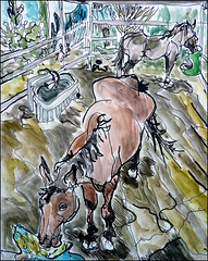 Elvis from Ladder (Kerry Niemann) Tags: horse apachejunction inkandwatercolordrawing