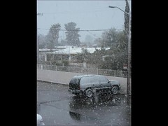 Snow Storm in Tucson, February 2013 (chazart7777) Tags: winter snow blizzard