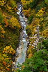 201610173879 (Gansan00) Tags: sony ilce7rm2 japan aomori hakkoda landscape      10