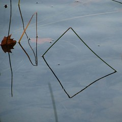 <> / <I (estiu87) Tags: abstract minimal myway minimalnature aigua water wasser reflexes reflections spiegelung