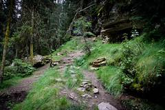 (box of lettuce) Tags: johnstoncanyon alberta banff nationalpark canada canyon outside adventure roadtrip hike johnston
