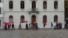 BASEL, SWITZERLAND (posterboy2007) Tags: basel switzerland swiss rain people umbrellas red mnsterplatz wet