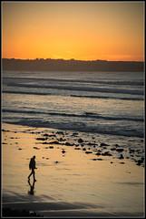 After the Sunset (Donald Noble) Tags: ireland sligo strandhill beach coast coastline colour gloaming landscape light orange person photographer reflection sea silhouette sun sunset water wave waves