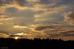 Sun Sky Birds (leaving-the-moon) Tags: 201610 autum baden colors deutschland germany goodlight hebst himmel kraichgau natur nature season sky sonnenuntergang sundown wolken