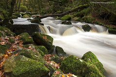 Golitha Falls, Cornwall (Daryl 1988) Tags: falls autumn golitha water landscape waterscape photography moss lonexposure slowshutter nd filters nikon tripod trees woodland bodminmoor colour gorge uk england river