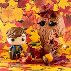 Funko 11.6.16 (PhotoSkunk) Tags: funko funkopop popfunko popvinyl toyphotography toys vinyltoys toy newtscamander fantasticbeastsandwheretofindthem snuffleupagus sesamestreet autumn fall leaves