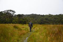 DSC_3257 (UdeshiG) Tags: mountain hike hillcountry teaestate mist sambar eagle hortonplains ohiya sunrise sky haputale nikon trek adisham
