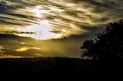 Atardeceres en El Pardo (mArregui) Tags: wwwarreguimeluscom marregui nikon atardecer atardeceres pardo elpardo madrid puestadesol textura cielo serenidad