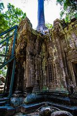 Cracks Forming (Arbron) Tags: cambodia taprohm asia2015 rajavihara siemreap temple   krongsiemreap kh